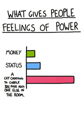 Funny Cards - Feelings Of Power