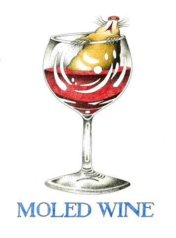 Moled Wine