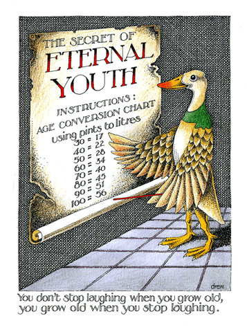 Birthday Card - Eternal Youth Instructions