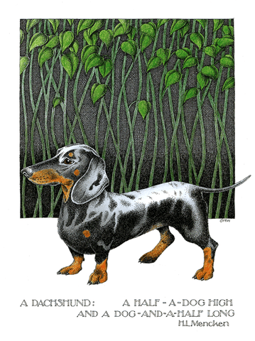 Funny Cards - Dachshund - Dog And A Half Long