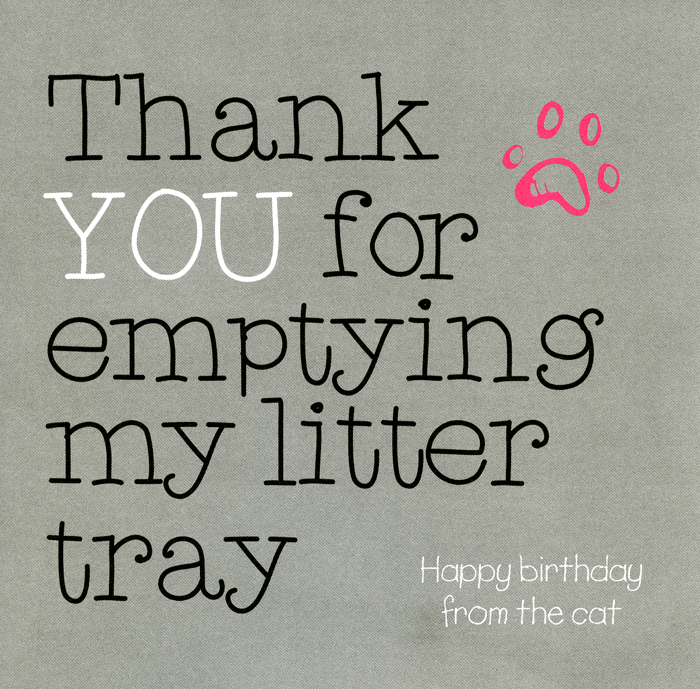 Funny Cards - Thank You For Emptying My Litter Tray