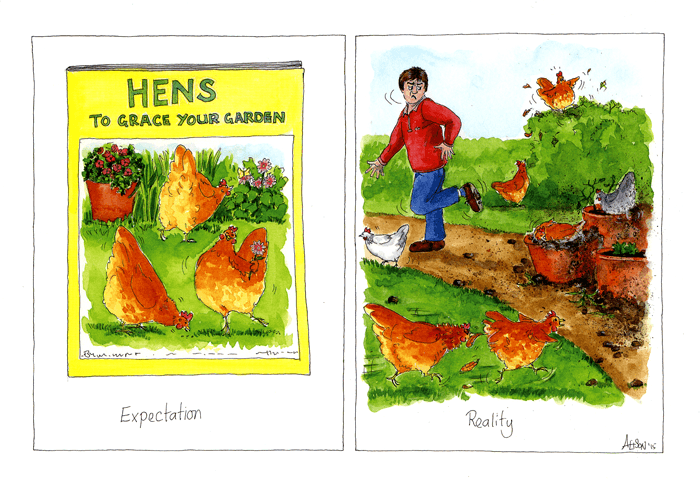 Funny Cards - Hens Grace Your Garden
