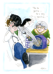 Funny Cards - Cat And Vet - He's Very Sensitive