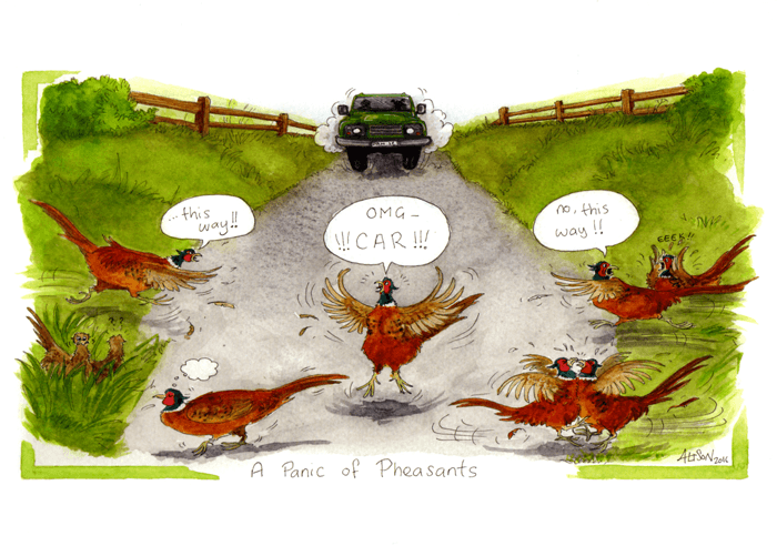 Funny Cards - Panic Of Pheasants