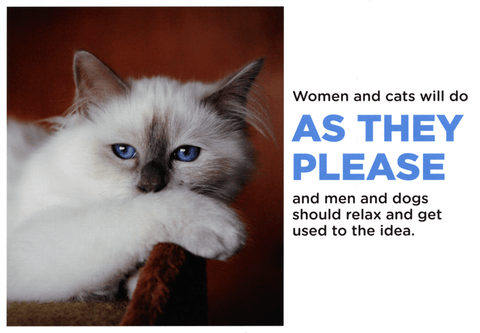 Funny Cards - Women And Cats Do As They Please