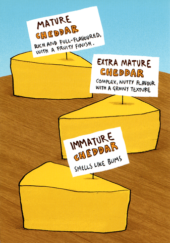 Funny Cards - Immature Cheddar