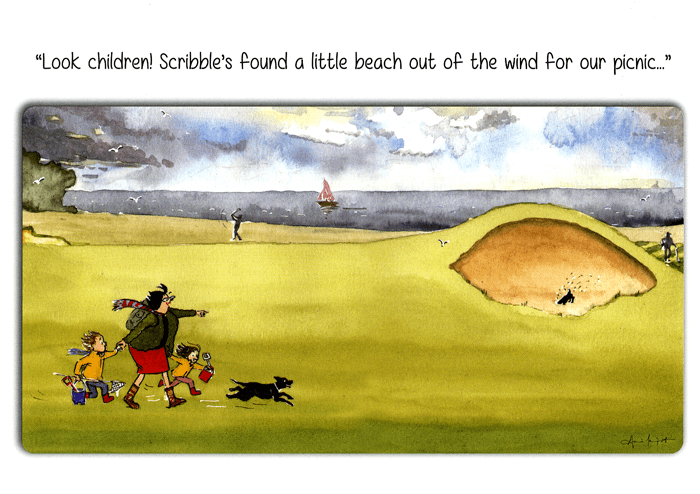 Funny Cards - Little Beach Out Of The Wind For Picnic