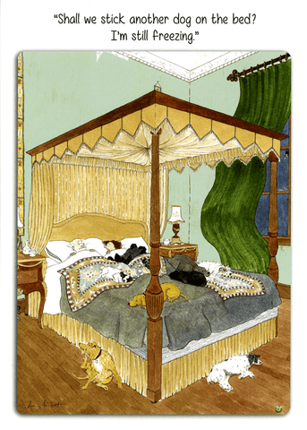Funny Cards - Another Dog On The Bed