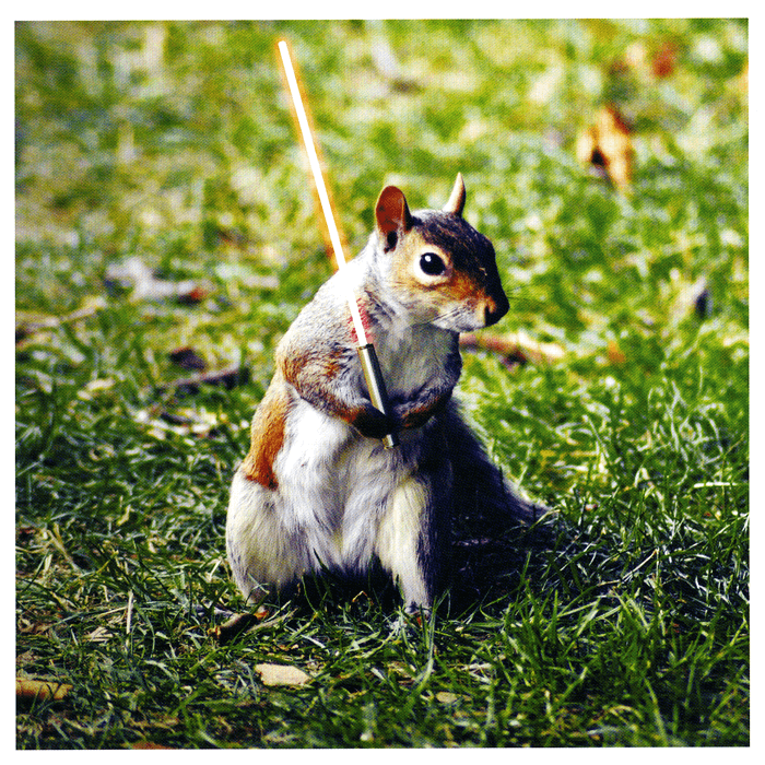 Funny Cards - Squirrel Star Wars