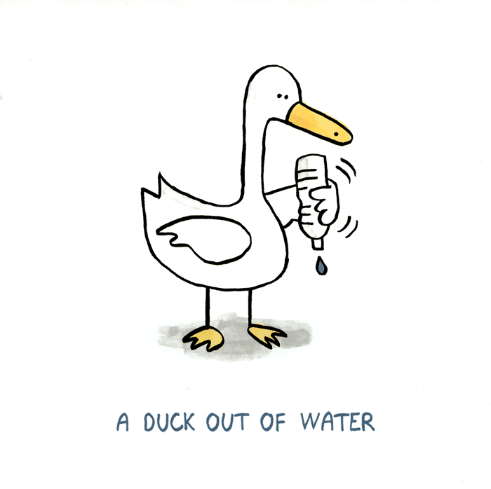Funny Cards - A Duck Out Of Water