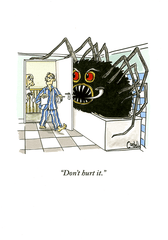 Funny Cards - Spider In The Bath - Don't Hurt It