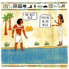 Birthday Card - Not Old - In De Nile
