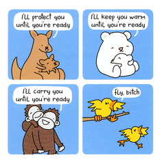 Funny Cards - I'll Protect You Until You're Ready