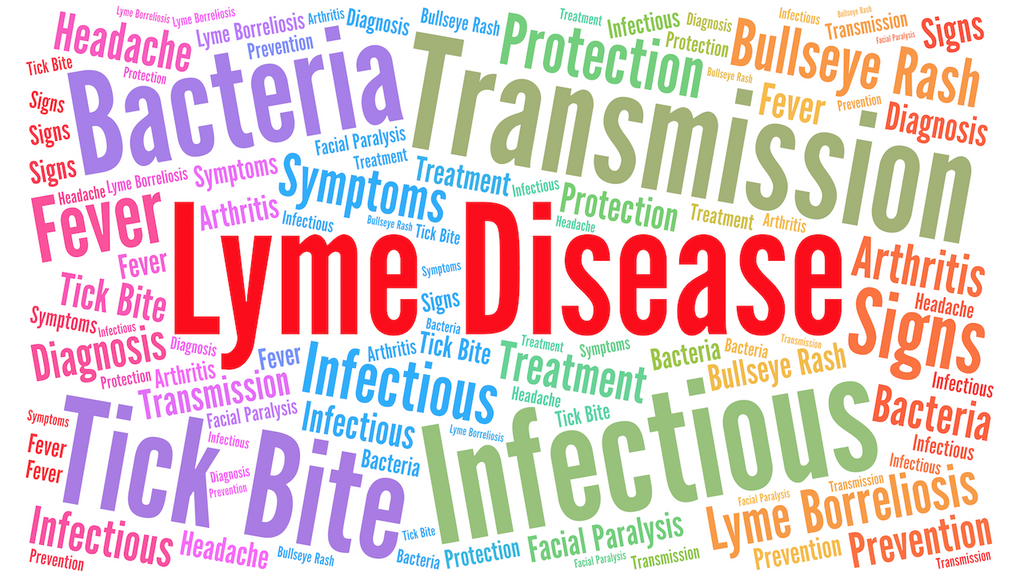 Jane's Blog Lyme Disease Prevention 2019