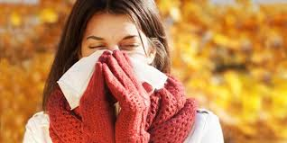 Jane's Blog It's Fall Allergy Season