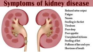 Jane's Blog Discover Kidney Disease 5 Years Earlier