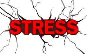 Jane's Blog Chronic Stress