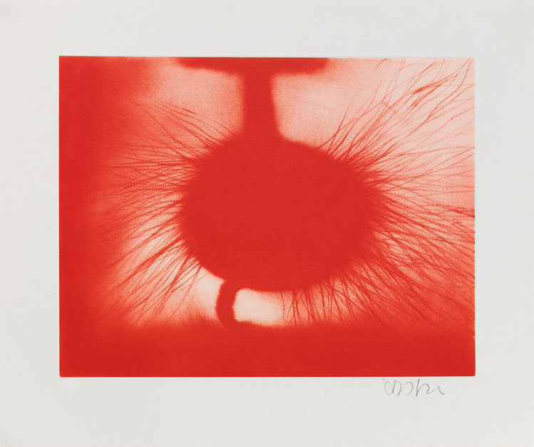 "Anish Kapoor ""Untitled"" (Red) 2014"