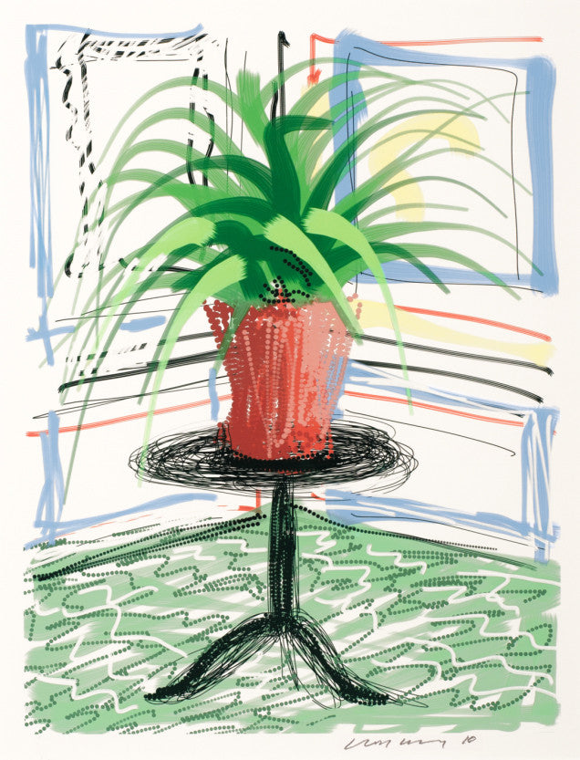 David Hockney Potted Plant Ipad Drawing Print