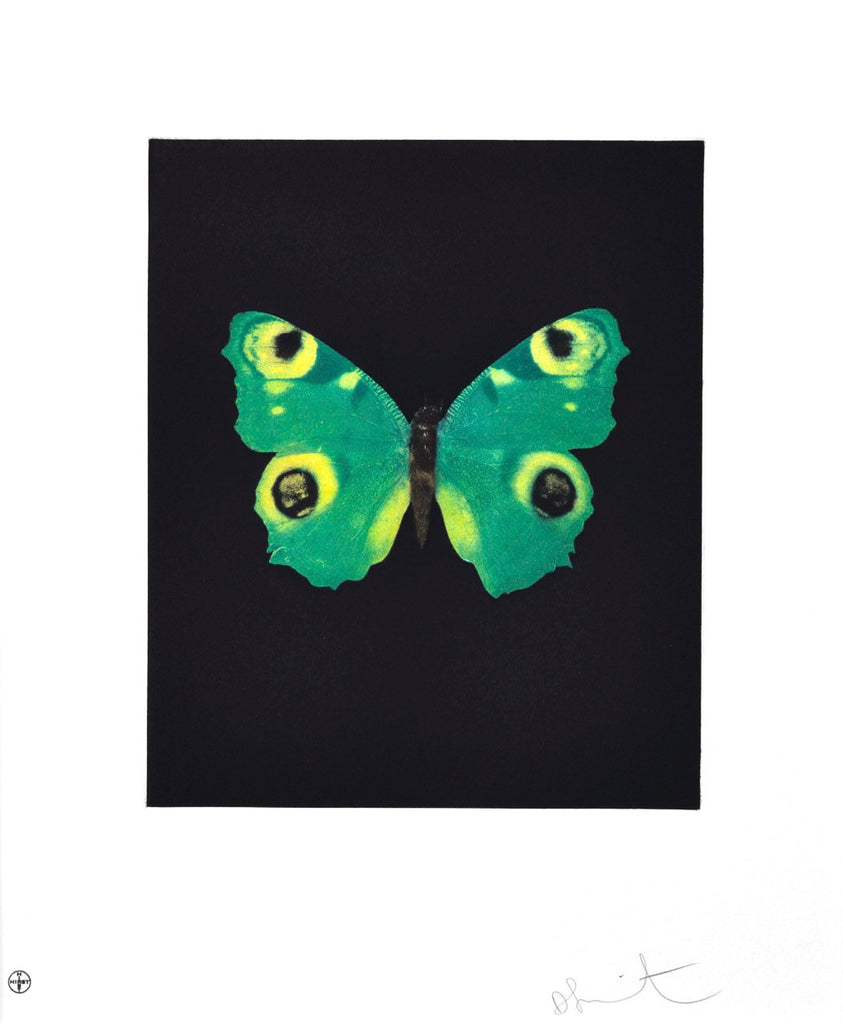 "Damien Hirst ""Fate"" Butterfly Etching"