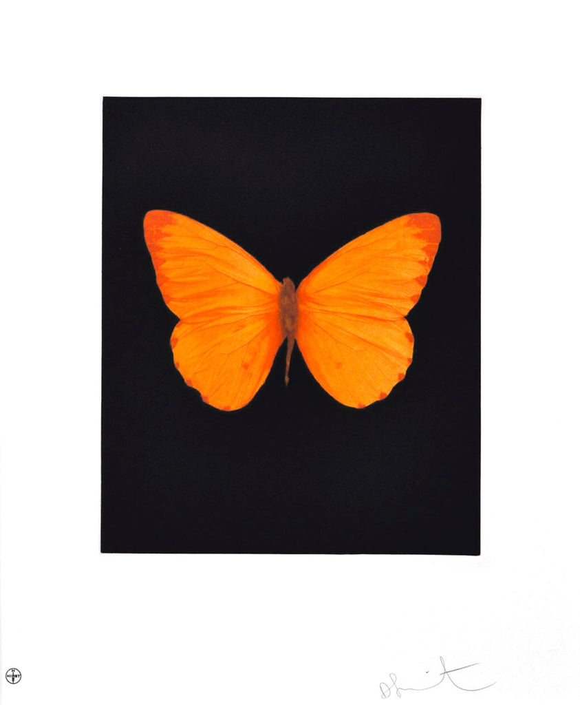 Damien Hirst Hope Butterfly Etching