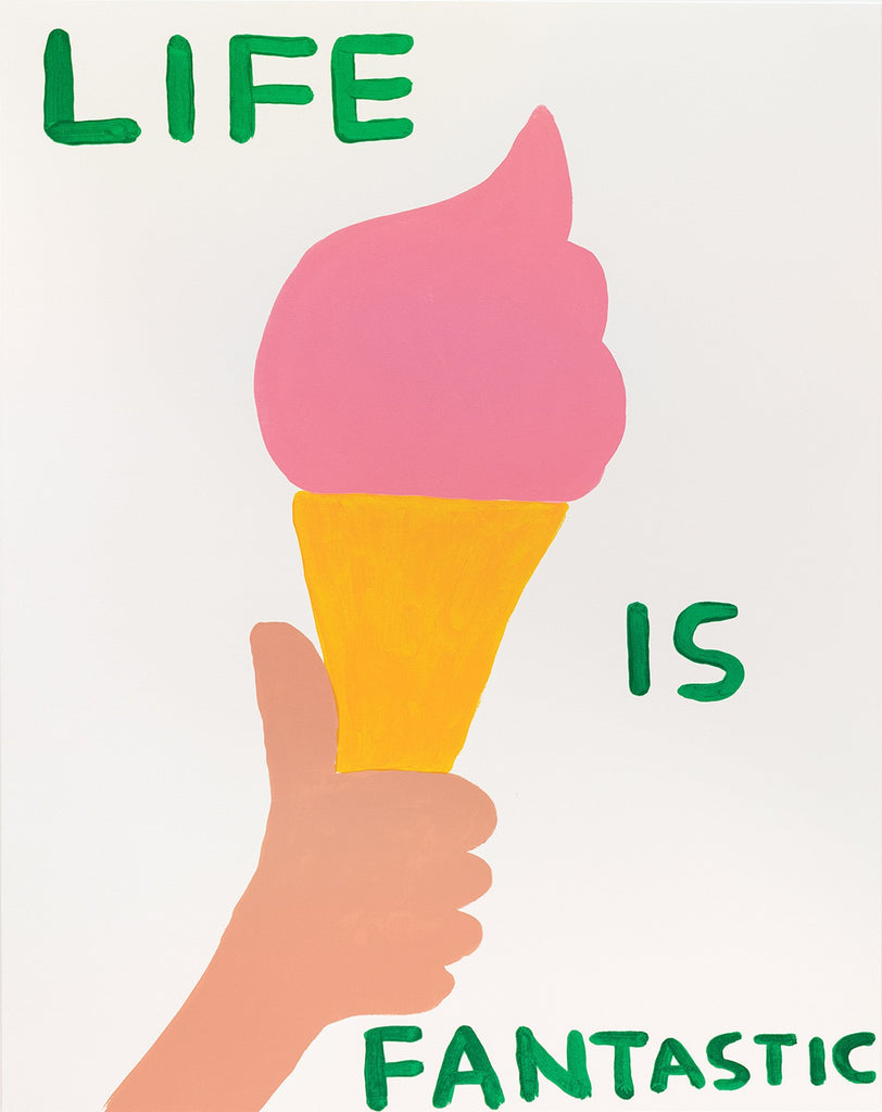 "David Shrigley ""Life is Fantastic"""