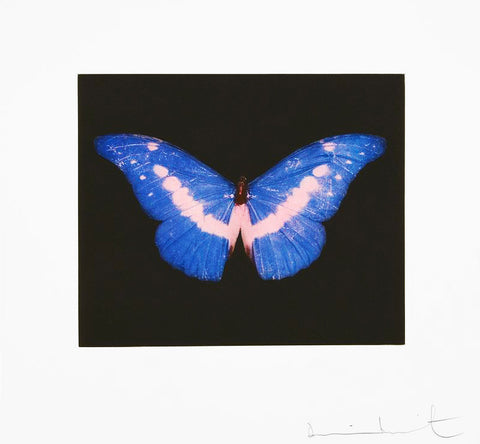 "Damien Hirst ""To Belong"" Butterfly Etching"