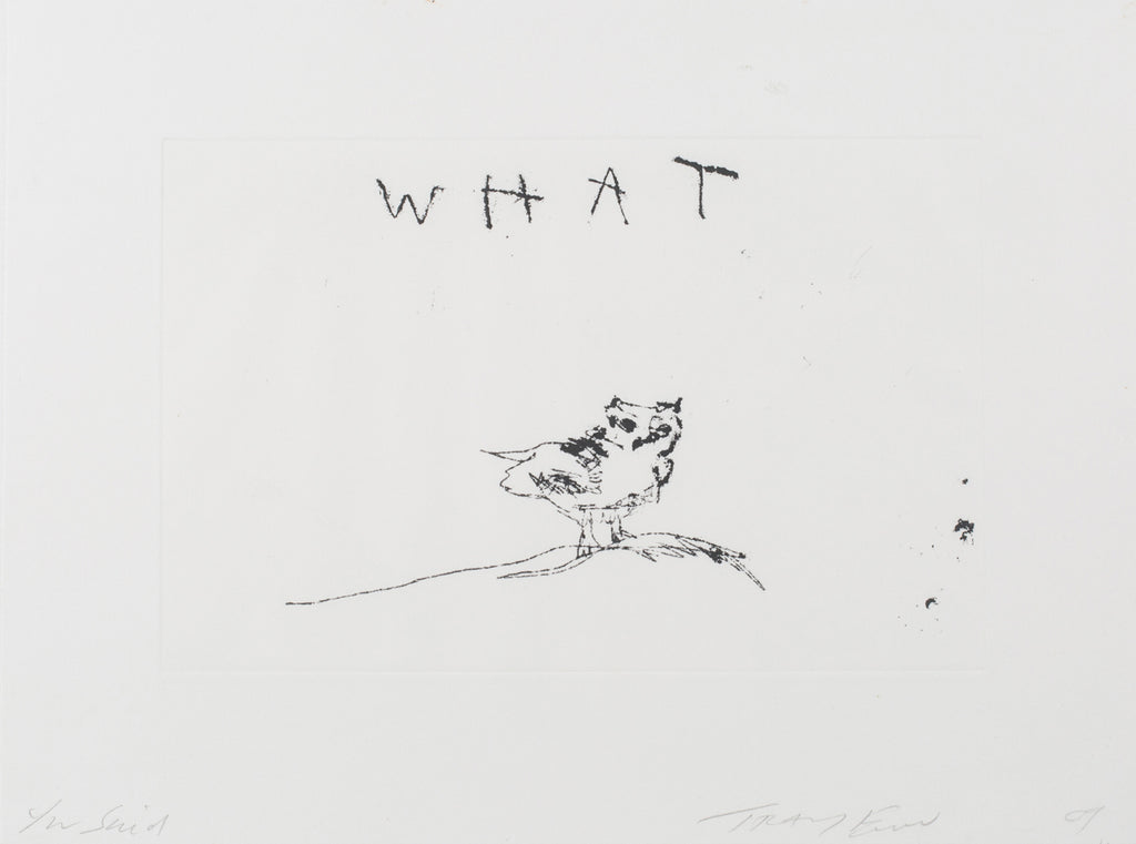 "Tracey Emin ""You said what"""