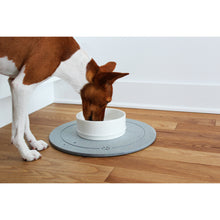 Load image into Gallery viewer, dog drinking from a be one breed  cool bowl on an absorbent stone placemat