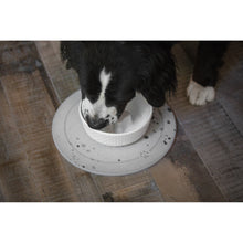 Load image into Gallery viewer, dog drinking from BeOneBreed Cool Bowl for Dogs - 1L / 33oz Cooling Bowl