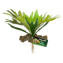Load image into Gallery viewer, Naturalistic Flora Plastic Plants Staghorn Fern