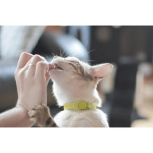 Load image into Gallery viewer, Be One Breed Adjustable Silicone Cat Collar Yellow va1