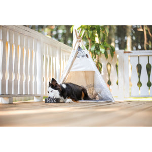 Dog sleeping in BeOneBreed Teepee for Dogs