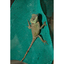 Load image into Gallery viewer, Zoo Med Lizard Ladder™