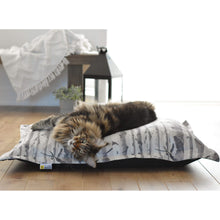 Load image into Gallery viewer, Cat sleeping on a be one breed cloud pillow birch wood va0