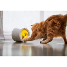 Load image into Gallery viewer, Orange cat playing with be one breed intellikatt at level 3 va0