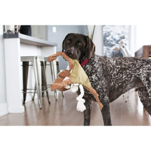 Load image into Gallery viewer, Dog playing with Be One Breed Dog Rope Toy Moose va0