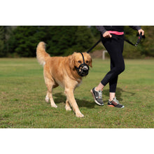 Load image into Gallery viewer, Dog Wearing Baskerville Ultra Muzzle Size 5 Retriever va5