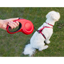Load image into Gallery viewer, Halti Retractable Leash In Park va0
