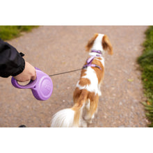 Load image into Gallery viewer, Halti Retractable Leash Walking va0