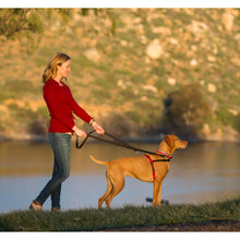 Load image into Gallery viewer, Halti® Double-ended Training Leash Double Clip In The Park va0
