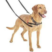 Load image into Gallery viewer, Halti® Double-ended Training Leash Double Clip On Labrador va0