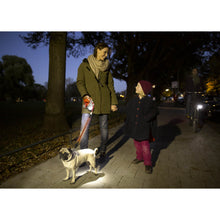 Load image into Gallery viewer, Family walking their dog at night using a Flexi LED va0
