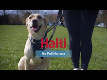 Load and play video in Gallery viewer, Halti® No Pull Harness for Dogs How to Fit and Use Video va0