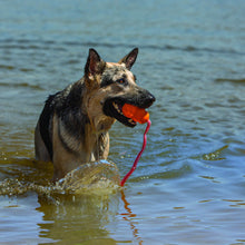 Load image into Gallery viewer, Dog playing with KONG Aqua in the water va0