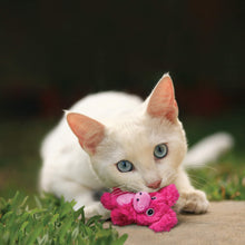 Load image into Gallery viewer, Cat playing with kong botanicals piglet va0