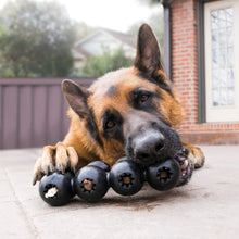 Load image into Gallery viewer, Dog playing with KONG Extreme Goodie Ribbon va0