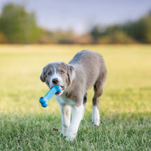 Load image into Gallery viewer, Dog playing with KONG Puppy Goodie Bone va0