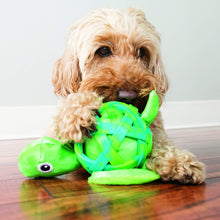 Load image into Gallery viewer, Dog playing with KONG Sea Shells Turtle va0