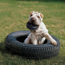 Load image into Gallery viewer, Dog playing with KONG Extreme Tire va0